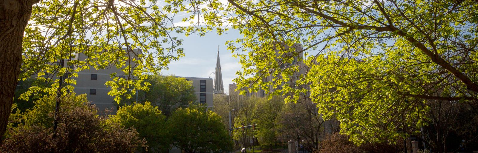 view of Creighton University through trees